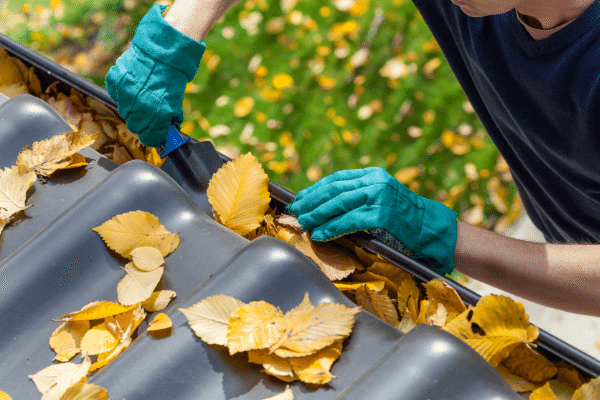 Cleaning your gutters is an important Winter maintenance job