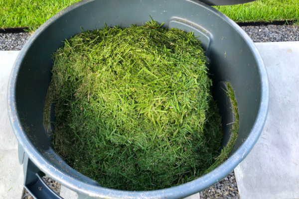 Image of lawn clippings - clean up lawn clippings prior to bushfire season
